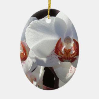 Ornamento De Cerâmica Orquídea branca