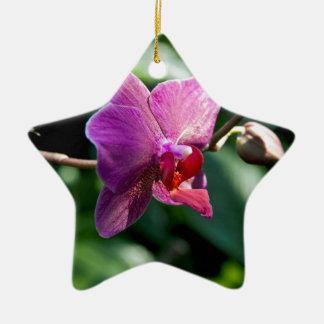 Ornamento De Cerâmica Orquídea mágica