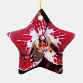Ornamento De Cerâmica Orquídea vermelha