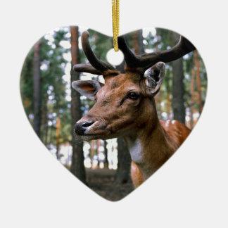 Ornamento De Cerâmica Os cervos de Brown aproximam árvores