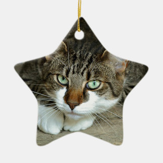 Ornamento De Cerâmica Os olhos de gato
