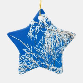 Ornamento De Cerâmica Os ramos da árvore durante o inverno