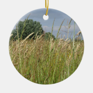 Ornamento De Cerâmica Paisagem do verão do campo selvagem no campo