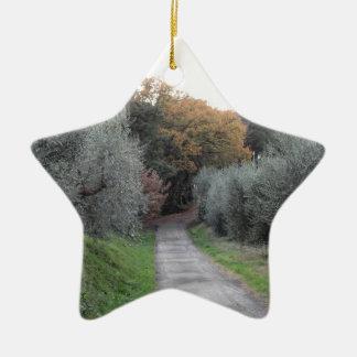 Ornamento De Cerâmica Paisagem rural com a estrada asfaltada no outono