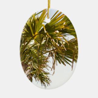 Ornamento De Cerâmica Palmeira da costa leste Myrtle Beach famoso