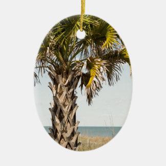 Ornamento De Cerâmica Palmeiras no passeio à beira mar da costa leste de