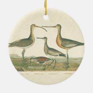 Ornamento De Cerâmica Pântano antigo do impressão do pássaro litoral