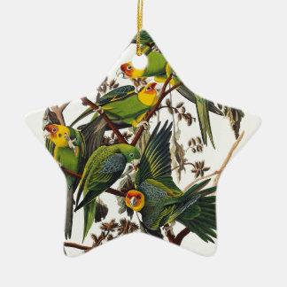 Ornamento De Cerâmica Papagaio de Carolina - John James Audubon