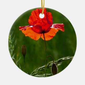 Ornamento De Cerâmica Papoila vermelha no verão 02