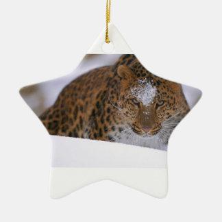 Ornamento De Cerâmica Pares raros de um leopardo de Amur sobre uma