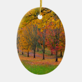 Ornamento De Cerâmica Parque com as árvores de bordo alinhadas árvore no
