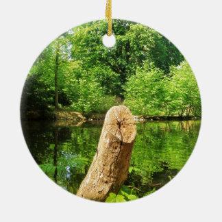 Ornamento De Cerâmica Parque do lago photography da natureza do tronco