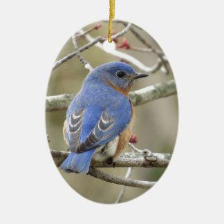Ornamento De Cerâmica Parte traseira do Bluebird