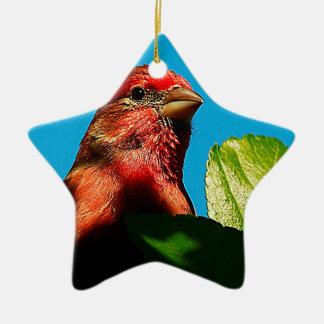 Ornamento De Cerâmica Passarinho roxo para a história do Natal