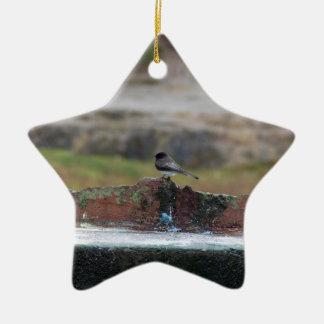 Ornamento De Cerâmica pássaro em uma parede