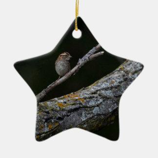 Ornamento De Cerâmica Pássaro pequeno