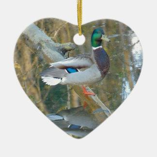 Ornamento De Cerâmica Pato refletido