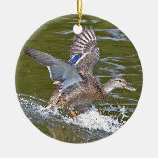 Ornamento De Cerâmica Pato selvagem fêmea que entra para aterrar