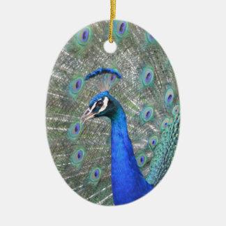 Ornamento De Cerâmica Pavão