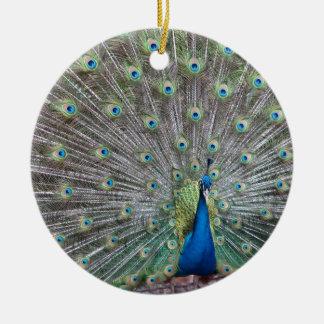 Ornamento De Cerâmica Pavão colorido