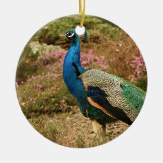 Ornamento De Cerâmica Pavão do verde azul e da laranja