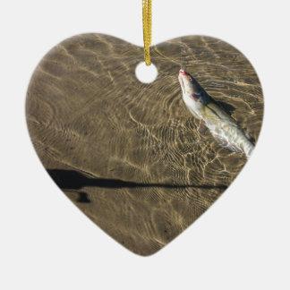 Ornamento De Cerâmica Peixe-gato de Missouri