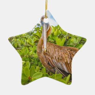 Ornamento De Cerâmica Pelicano grande na árvore, Galápagos, Equador