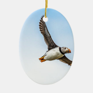 Ornamento De Cerâmica Pena da mosca dos animais selvagens do vôo do mar