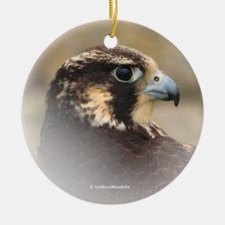 Ornamento De Cerâmica Perfil de Vignetted de um falcão de peregrino