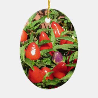 Ornamento De Cerâmica Pimentas de pimentão vermelho que penduram na