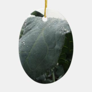 Ornamento De Cerâmica Pingos de chuva nas folhas da couve-flor