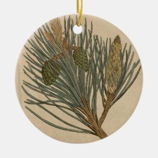 Ornamento De Cerâmica Pinho escocês