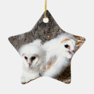 Ornamento De Cerâmica Pintinhos da coruja de celeiro em um ninho