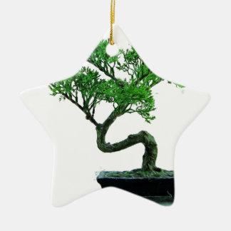 Ornamento De Cerâmica pintura da bonsai-árvore