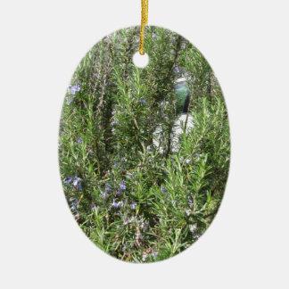 Ornamento De Cerâmica Planta de Rosemary com flores. Toscânia, Italia