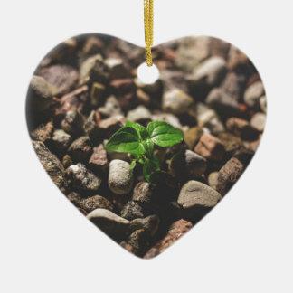 Ornamento De Cerâmica Planta frondosa verde que começa crescer em