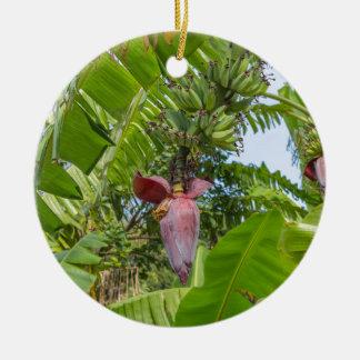 Ornamento De Cerâmica Plantação de banana na ilha macilento de Sok Kwu