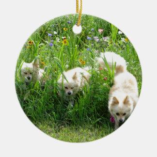 Ornamento De Cerâmica Pomeranian