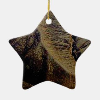 Ornamento De Cerâmica pontos naturais