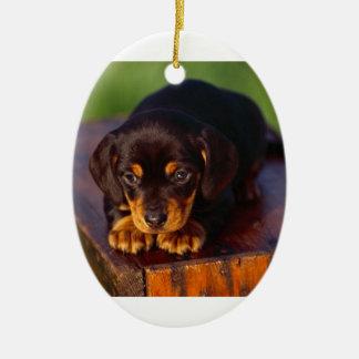 Ornamento De Cerâmica Preto e filhote de cachorro do Coonhound de Tan