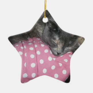 Ornamento De Cerâmica Produtos do gato