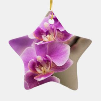 Ornamento De Cerâmica Profundamente - corrente de flor cor-de-rosa da