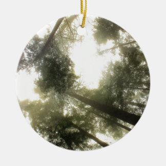 Ornamento De Cerâmica Proteja nossas florestas