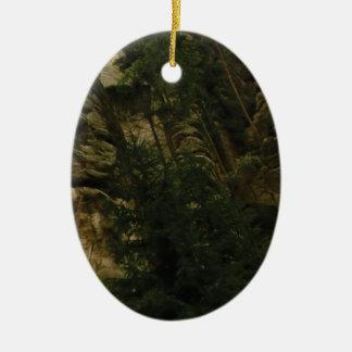 Ornamento De Cerâmica protuberâncias e colisões da rocha