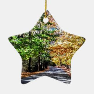 Ornamento De Cerâmica Queda de Nova Inglaterra