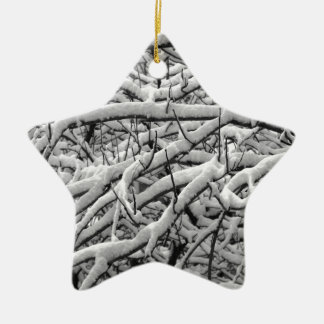 Ornamento De Cerâmica Ramos nevado