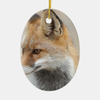 Ornamento De Cerâmica raposa
