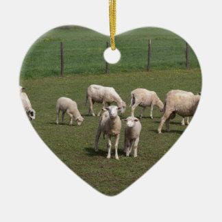 Ornamento De Cerâmica Rebanho dos carneiros