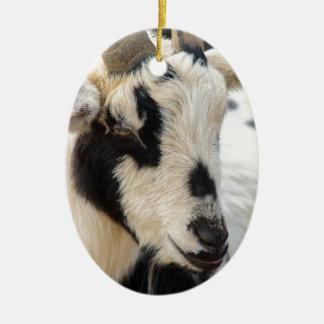 Ornamento De Cerâmica Retrato da cabra