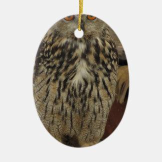 Ornamento De Cerâmica Retrato de coruja longo-orelhuda. Otus do Asio,